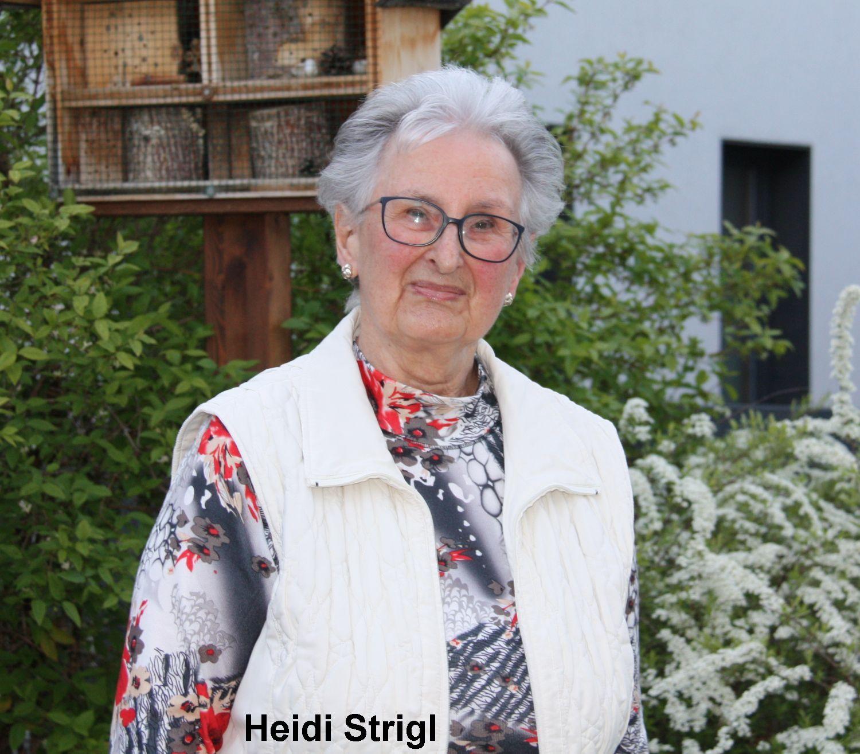 Heidi Strigl