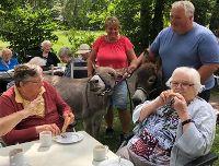 Esel zu Besuch im Seniorenheim