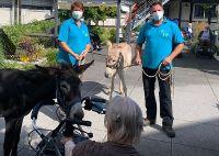 Esel besuchen Caritas-Seniorenheim